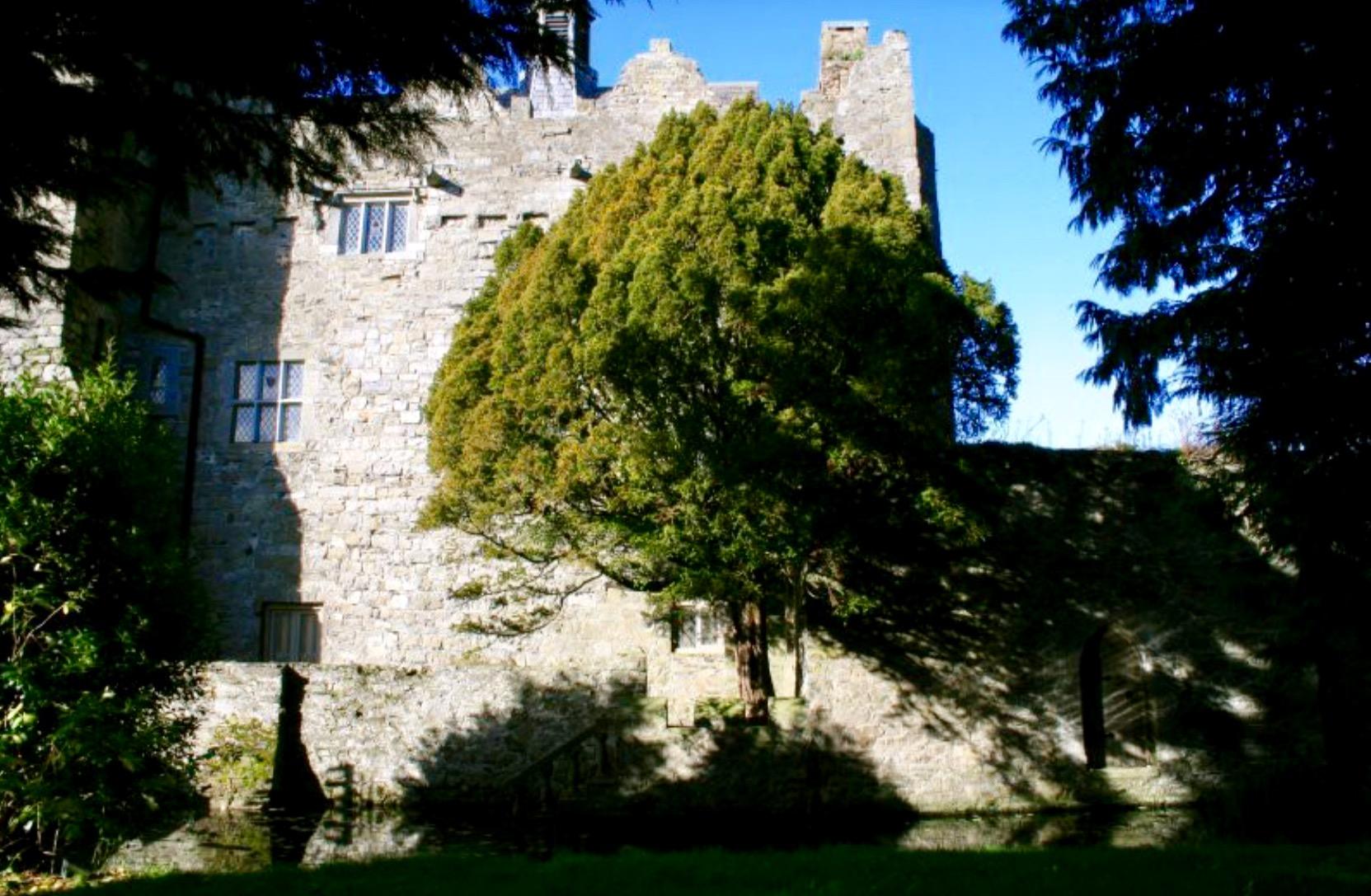 Drimnagh Castle Moat